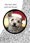 dear santa dog card